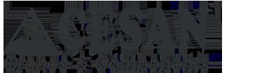 CESAN Elektrikli Vinç Sanayi ve Ticaret A.Ş.